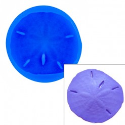 Sand Dollar Mold by First Impressions Molds